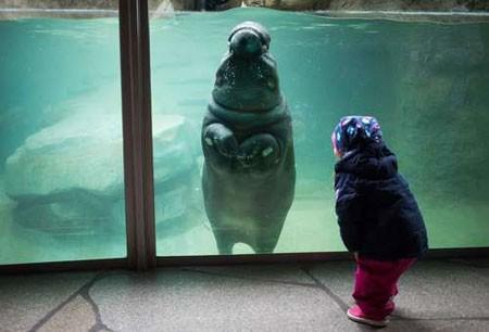 عکسهای جالب,عکسهای جذاب,باغ وحش