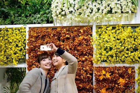 عکسهای جالب,عکسهای جذاب, زنان ژاپنی