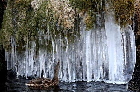 عکسهاي جالب,عکسهاي جذاب ,آبشار يخ زده