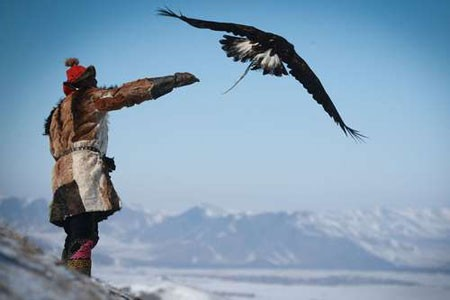 عکسهاي جالب,عکسهاي جذاب, شکارچيان عقاب