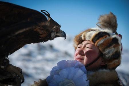 عکسهاي جالب,عکسهاي جذاب,عقاب طلايي