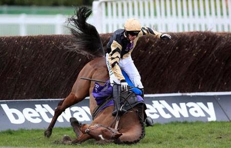 عکسهاي جالب,عکسهاي جذاب,زمين خوردن اسب