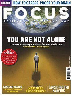اخبار,اخبار علمی,تنهایی