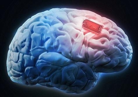 اخبار,اخبار پزشکی,مغز