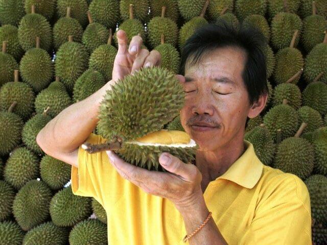 اخبار,اخبارگوناگون,میوه ای که به بوی مشمئز کننده اش معروف است!