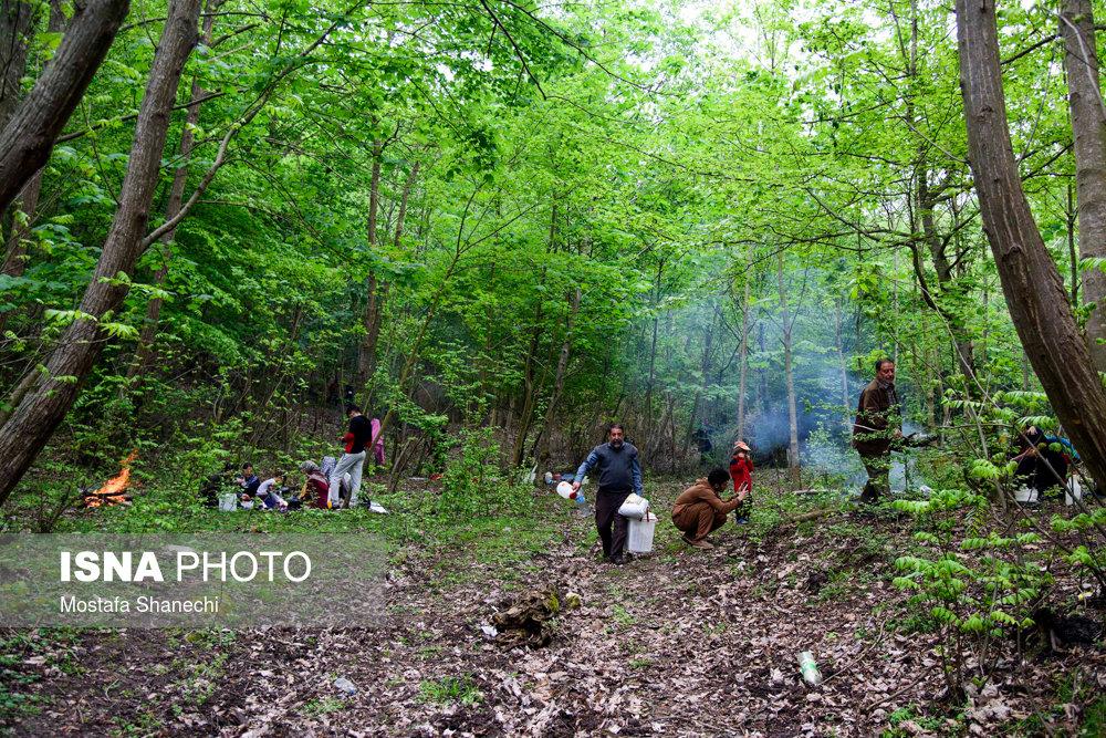 اخبار,عکس خبری,روز طبیعت - استان ها