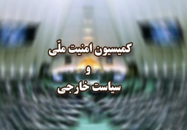 اخبار,اخبار سیاسی,کمیسیون امنیت ملی مجلس