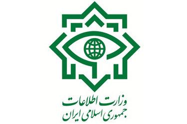 محمود علوی: اخیرا چند تیم تروریستی همراه مهمات دستگیر شدهاند