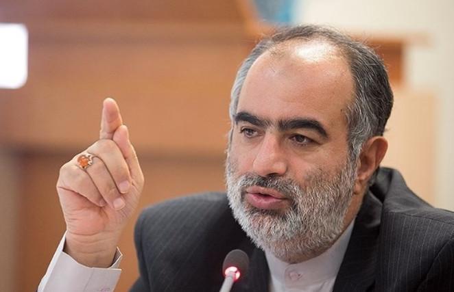 اخبار,اخبار سیاست خارجی,حسام الدین آشنا