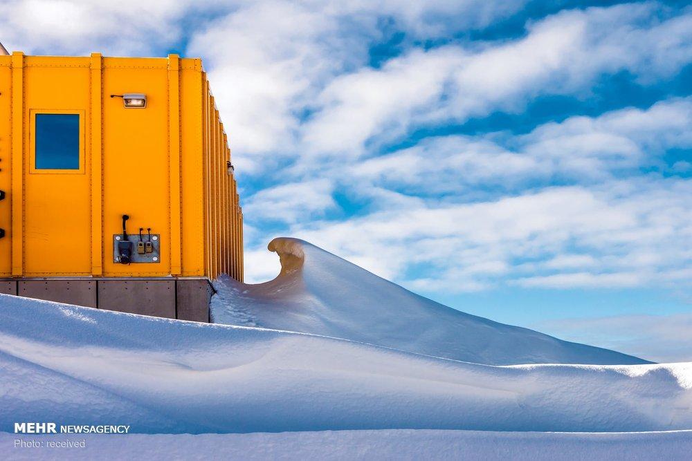 اخبار,اخبارگوناگون, تصاویری از قطب جنوب