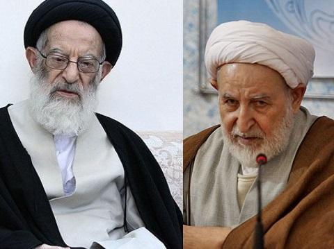 اخبار,اخبار سیاسی,آیت الله یزدی و آیت الله شبیری زنجانی