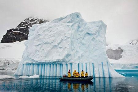 عکسهای جالب,عکسهای جذاب,جنوبگان