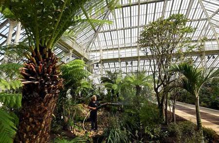 عکسهای جالب,عکسهای جذاب,آبیاری گل و گیاه