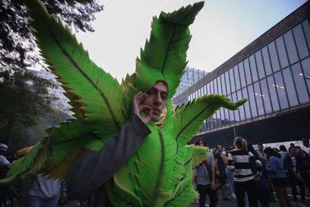 عکسهای جالب,عکسهای جذاب, ماریجوانا