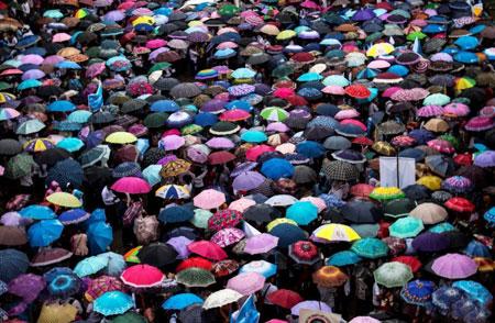 عکسهاي جالب,عکسهاي جذاب,چتر