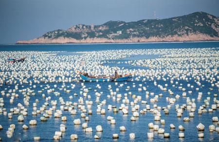 عکسهای جالب,عکسهای جذاب , ماهیگیر