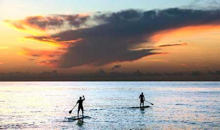 عکسهای جالب,عکسهای جذاب,ساحل نخل