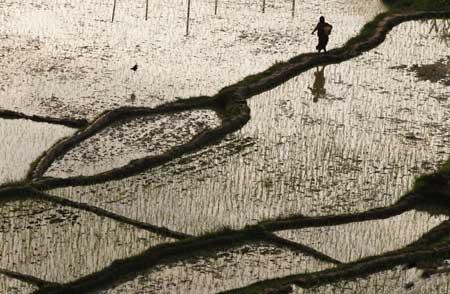 عکسهاي جالب,عکسهاي جذاب,آب و هواي زمستاني