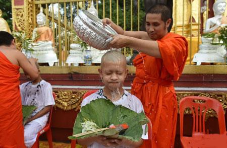 عکسهای جالب,عکسهای جذاب,راهبان بودایی