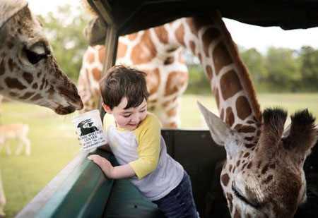 عکسهای جالب,عکسهای جذاب,پارک حیات وحش
