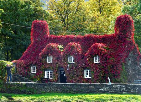 عکسهای جالب,عکسهای جذاب, خانه زیبا