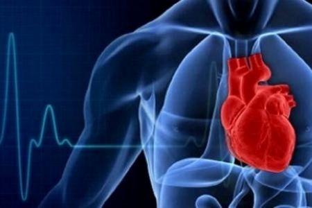 اخبار پزشکی ,خبرهای پزشکی,تناسب قلب و عروق
