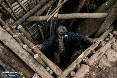 اخبار,عکس خبری,استخراج یاقوت سرخ در میانمار