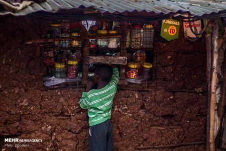 اخبار,عکس خبری,زندگی در بزرگترین منطقه کپرنشین آفریقا