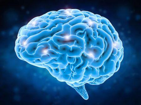 اخبار علمی ,خبرهای علمی,ایمپلنت مغزی