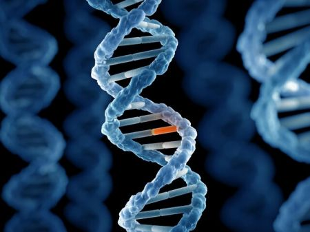 اخبار علمی ,خبرهای علمی,جهش ژنتیکی