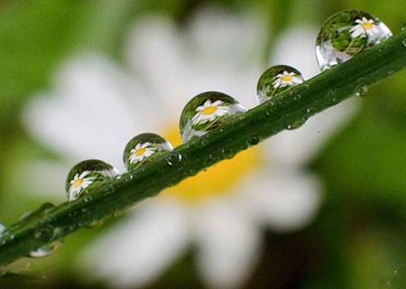 عکسهای جالب,عکسهای جذاب ,باران