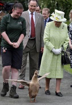 عکسهای جالب,عکسهای جذاب,ملکه بریتانیا