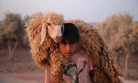 عکسهای جالب,عکسهای جذاب,پسر سوری