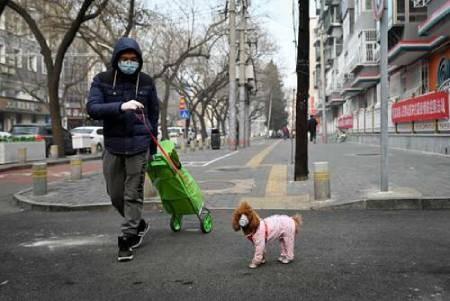 عکسهای جالب,عکسهای جذاب, حیوانات خانگی