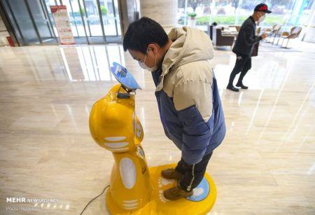 اخبار,اخبار تکنولوژِی,کمک گرفتن از ربات ها در روزهای کرونایی