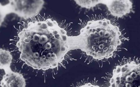 اخبار,اخبار پزشکی,بهبود سرطان بدون شیمیدرمانی