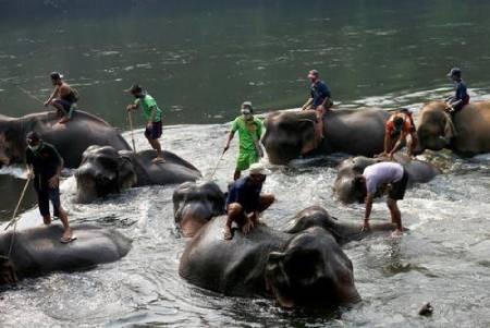 عکسهای جالب,عکسهای جذاب,شستشوی فیلها