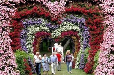 عکسهای جالب,عکسهای جذاب, جشنواره گل