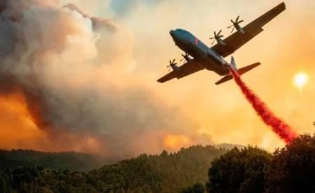 عکسهای جالب,عکسهای جذاب, مهار آتشسوزی جنگلی
