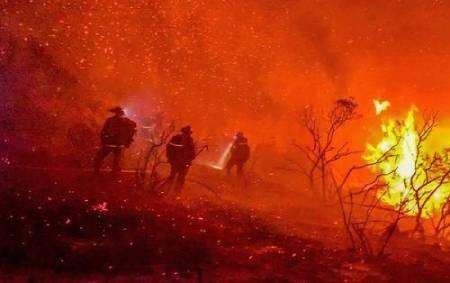 عکسهای جالب,عکسهای جذاب,آتشنشانان