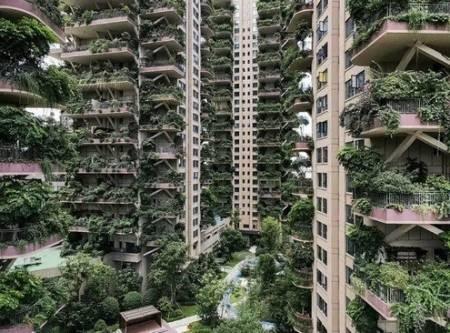 عکسهای جالب,عکسهای جذاب,برجهای مسکونی سرسبز