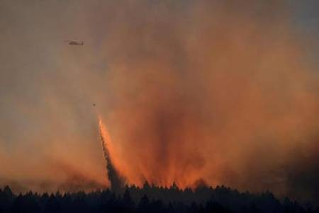 عکسهای جالب,عکسهای جذاب,آتشسوزی جنگلی