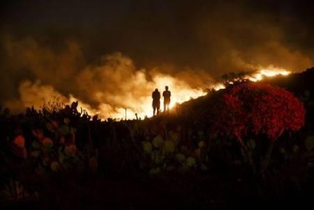 عکسهای جالب,عکسهای جذاب, آتشسوزی جنگلی