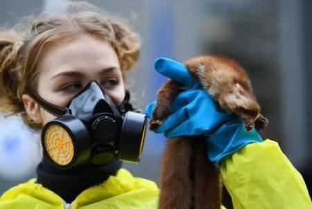 عکسهای جالب,عکسهای جذاب,حقوق حیوانات