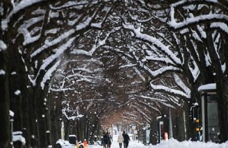 عکسهای جالب,عکسهای جذاب,بارش برف