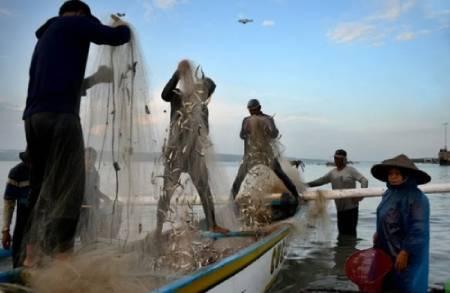 عکسهای جالب,عکسهای جذاب,ماهیگیران