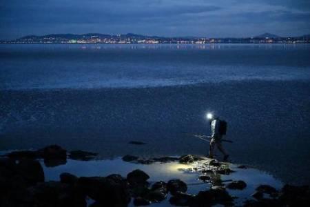 عکسهای جالب,عکسهای جذاب,ماهیگیری شبانه