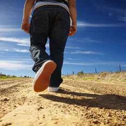 فواید پیاده روی به سوی مدرسه