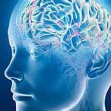 تقویت حافظه,قوی بودن حافظه,اعتماد به حافظه