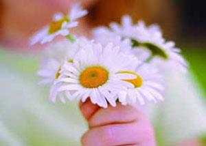 دردسر های مهربانی,مهربانی و مهرورزی, افراد مهرورز